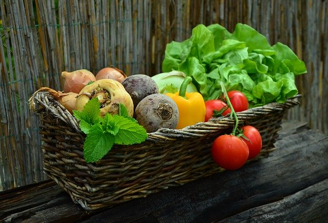 Image of a basket of vegetables on article veganuary guide